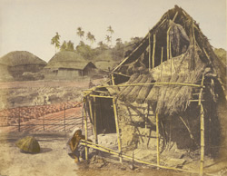 Hut of a pariah woman near Calcutta